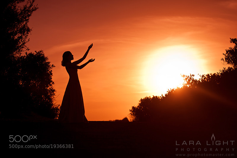 Photograph Song for sun by Lara Light on 500px