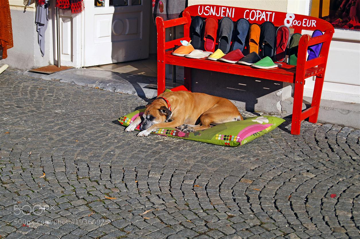 Photograph slippers watchman by Edvard - Badri Storman on 500px