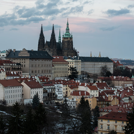 Prague Castle - common, Nikon D750, Tamron SP 70-300mm f/4-5.6 Di VC USD (A005)