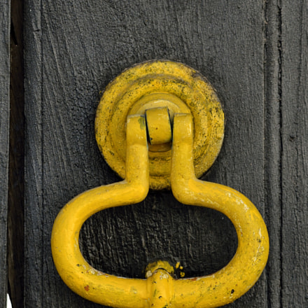Yellow Knocker, Nikon D7000, AF Nikkor 70-210mm f/4-5.6