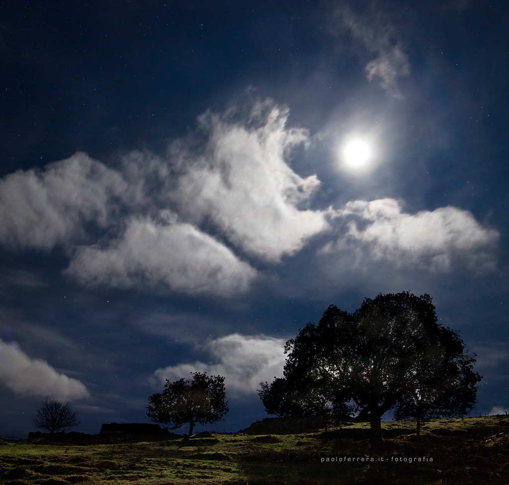 Photograph In the moonlight by Paolo Ferrera on 500px