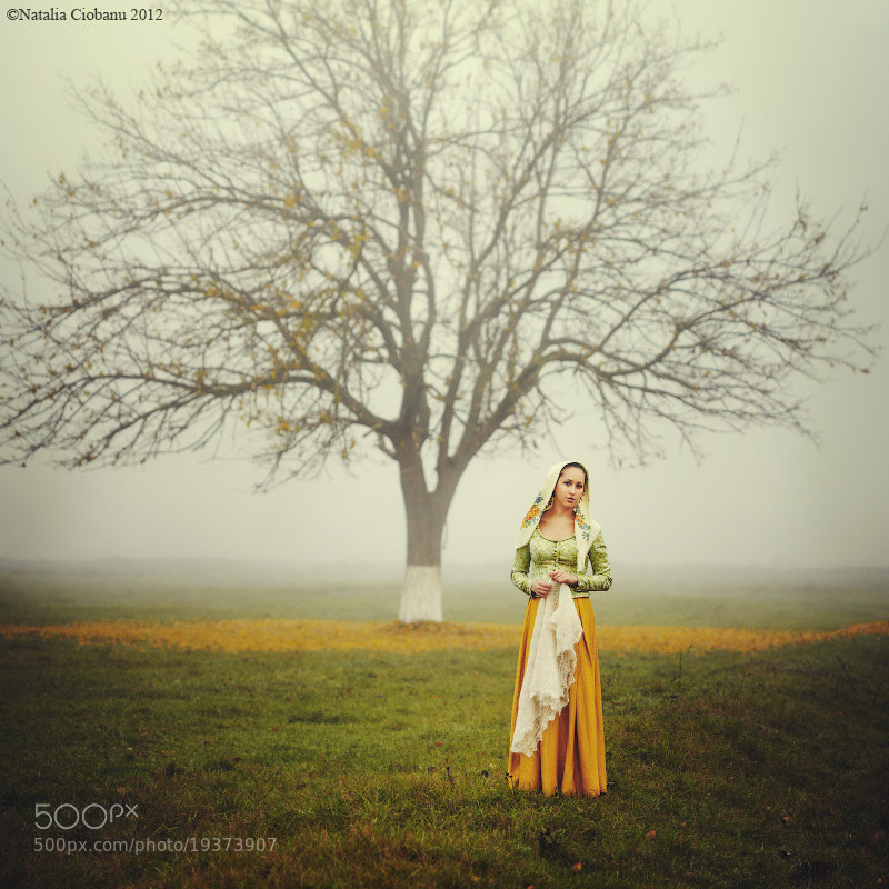 Photograph The tree by Natalia Ciobanu on 500px
