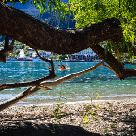 Tree by the Lake, Canon EOS 450D, Tamron AF Aspherical 28-200mm f/3.8-5.6