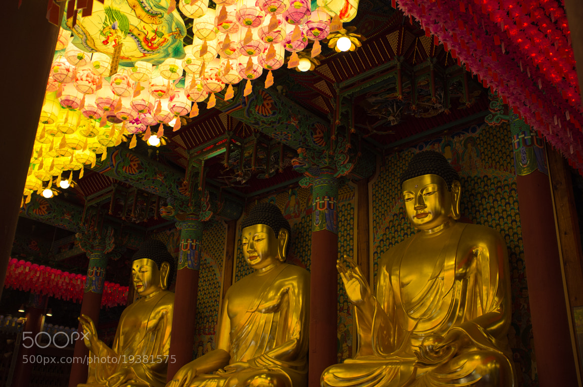 Photograph jogyesa temple seoul by Severin Stalder on 500px