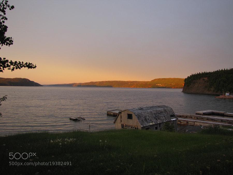 Taken from Petley, Random Island, Newfoundland.