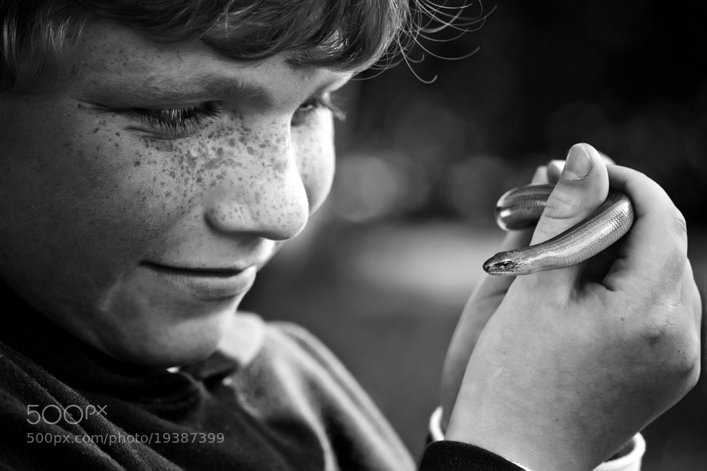 Photograph The little thing by Cath Schneider on 500px