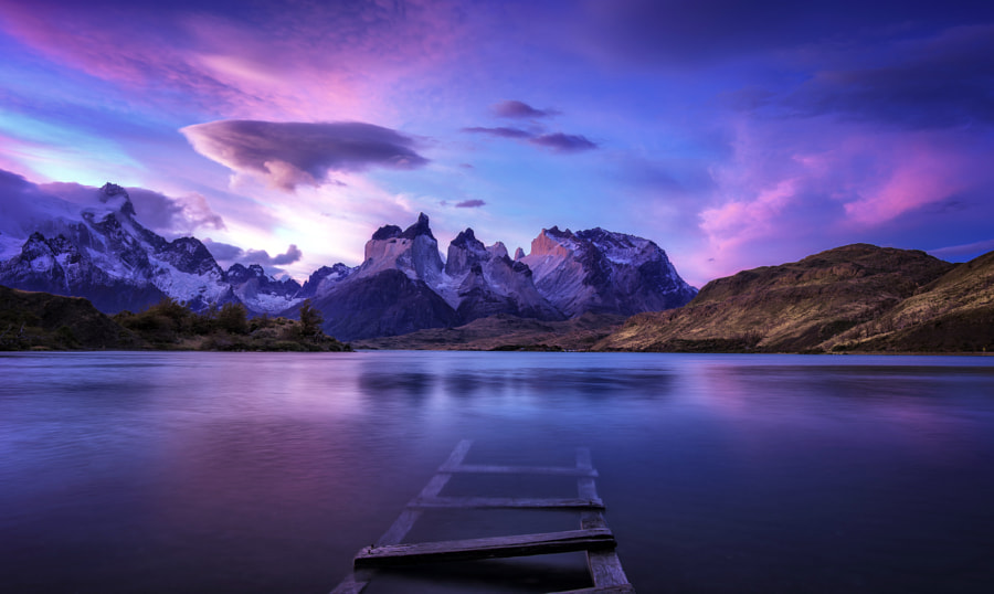 One Voice by Timothy Poulton