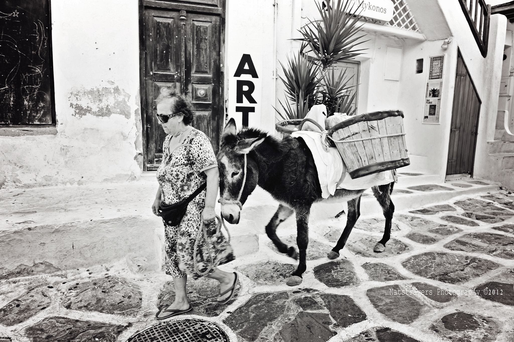 Photograph Donkey in Mykonos by Nathalie Stravers on 500px