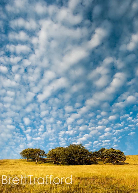 Photograph Sky 3 by Brett Trafford on 500px