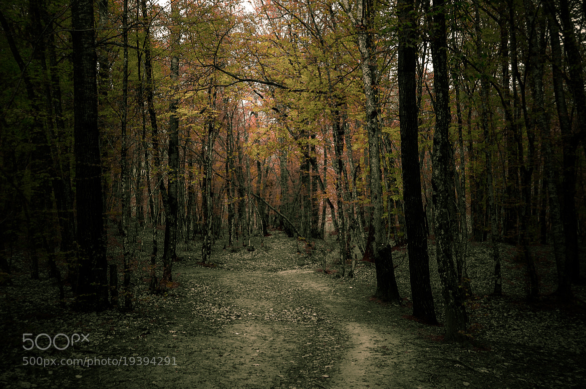Photograph Spleen and Ideal by Longland  River on 500px
