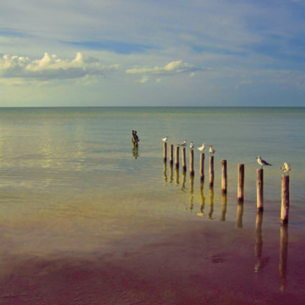 IslaHolbox Mexico(), Canon POWERSHOT A3300 IS