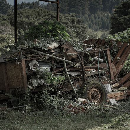Abandoned truck, Canon EOS REBEL SL1, Canon EF-S 18-135mm f/3.5-5.6 IS STM