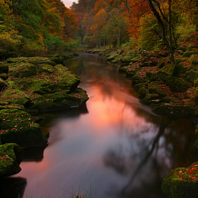 The Strid by Wolfy . (Wolfy)) on 500px.com