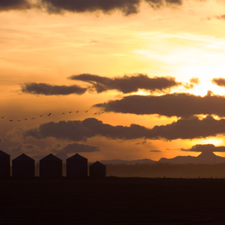 Country Sunset, Canon POWERSHOT SX530 HS