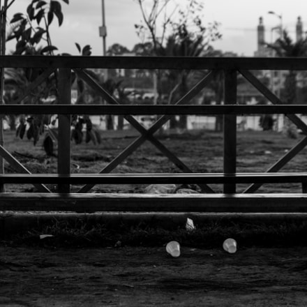 Lonely, Canon EOS 7D MARK II, Canon EF-S 15-85mm f/3.5-5.6 IS USM