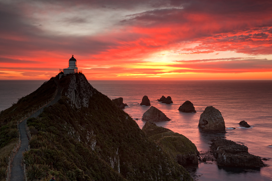 Photograph Nugget Point by Oleg Ershov on 500px
