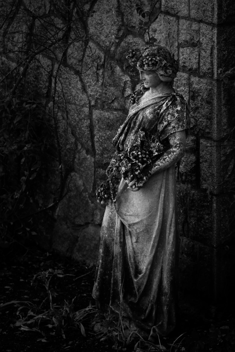 Photograph Solemn Lady of Hatley Castle by Carrie Cole on 500px