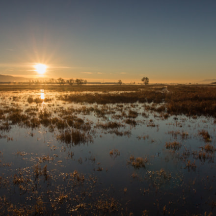 Coyote Hills Sunrise, Canon EOS REBEL SL1, Canon EF-S 10-18mm f/4.5-5.6 IS STM