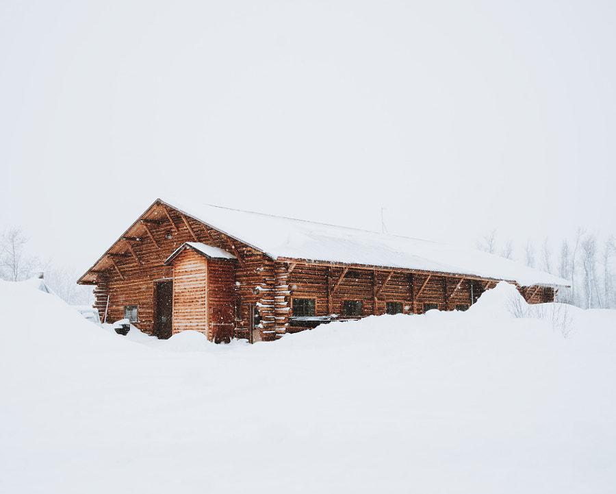 Snowed in.. Jackson, WY. by Berty Mandagie on 500px.com