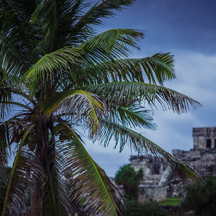 Mayan ruins at Tulum II