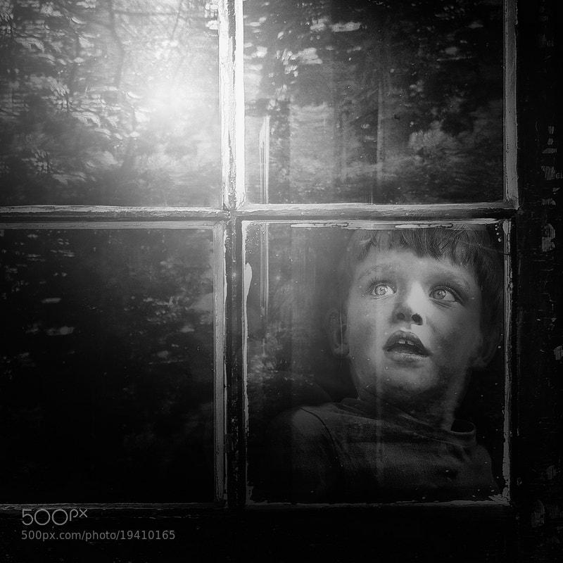 Photograph little wonders by Emese-durcka Laki on 500px