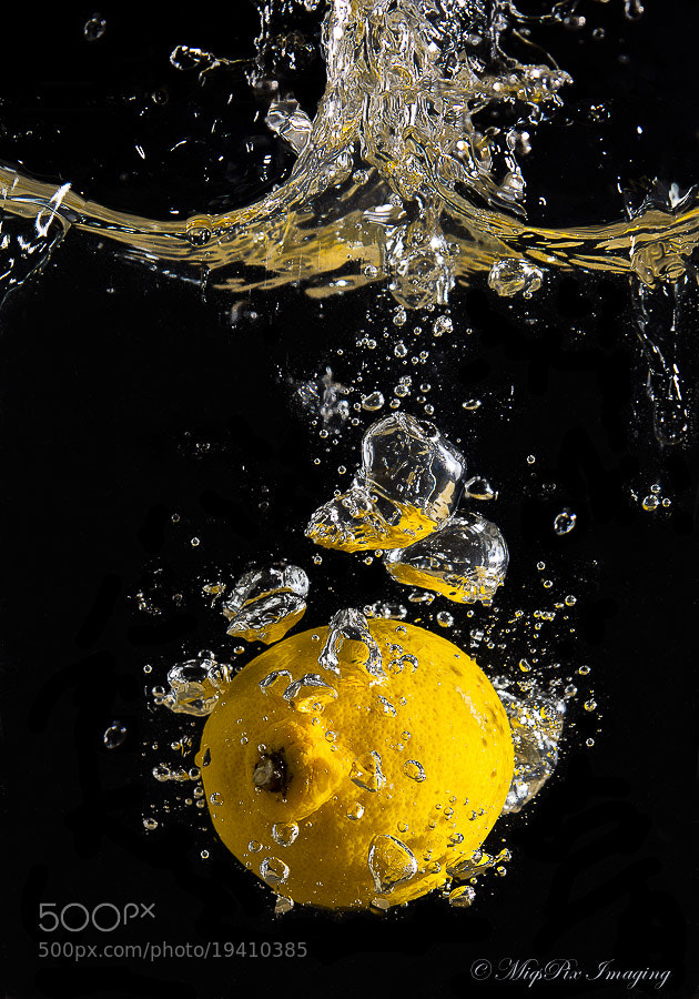 Photograph Lemon Drop! by Roger Green on 500px