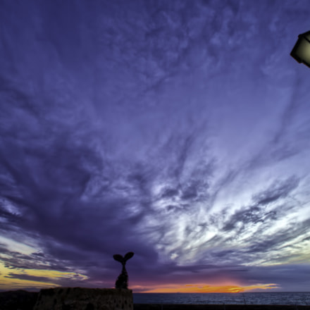 SUNSETSPOT, Canon EOS-1D X, Canon EF 14mm f/2.8L
