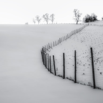 The Fence and the Snow
