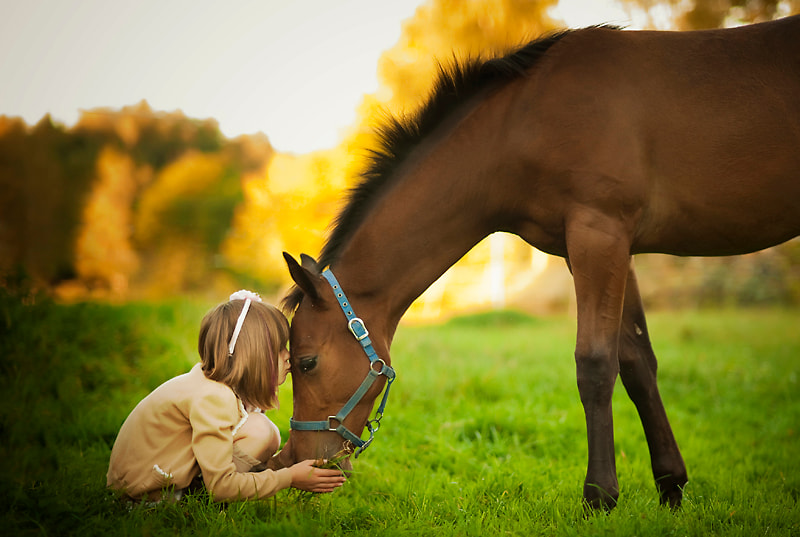 Photograph Kiss from a friend by Simone Hertel on 500px