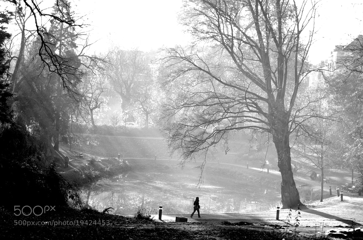 Photograph A day at the park by Sandra Bigeard on 500px