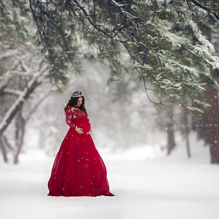 Lady in Red, Canon EOS 5D MARK IV, Canon EF 200mm f/2L IS