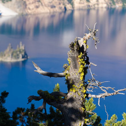 Crater Lake, Oregon, Nikon D7200, AF-S DX Nikkor 18-300mm f/3.5-6.3G ED VR