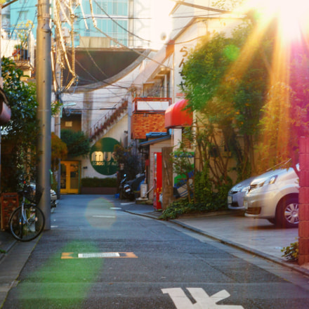 Tokyo Afternoon Chill, Sony NEX-5T, E 55-210mm F4.5-6.3 OSS