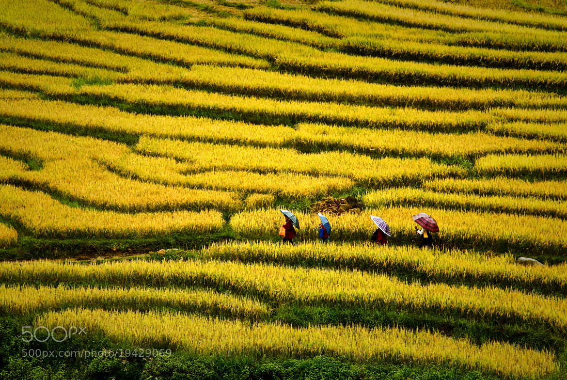 Photograph SAPA by Elias Jerusalem on 500px
