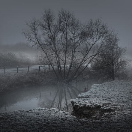 Winter Morning Mist