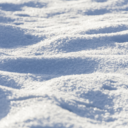 Snow, Canon EOS-1DS MARK II, Canon EF 28-300mm f/3.5-5.6L IS