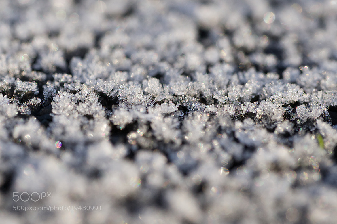 Photograph Frost Crystals by Craig Kirkwood on 500px