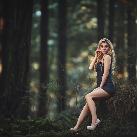 Beauty in the forest, Canon EOS 5D MARK III, Canon EF 200mm f/2L IS