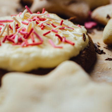 Tasty homemade cookie with, Canon EOS 5D MARK III, Canon EF 50mm f/2.5 Macro