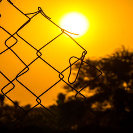sun in fence, Sony SLT-A35, Sony DT 55-200mm F4-5.6 SAM (SAL55200-2)