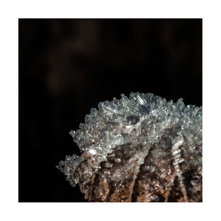 Frost, Canon EOS 60D, Canon EF-S 60mm f/2.8 Macro USM
