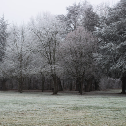 Snow At Cheverny, Canon EOS 100D, Canon EF 40mm f/2.8 STM