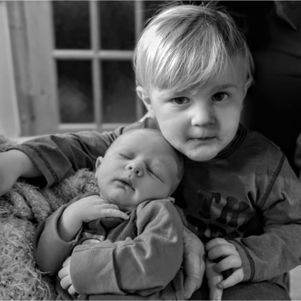 Brotherly Love, Panasonic DMC-LX100