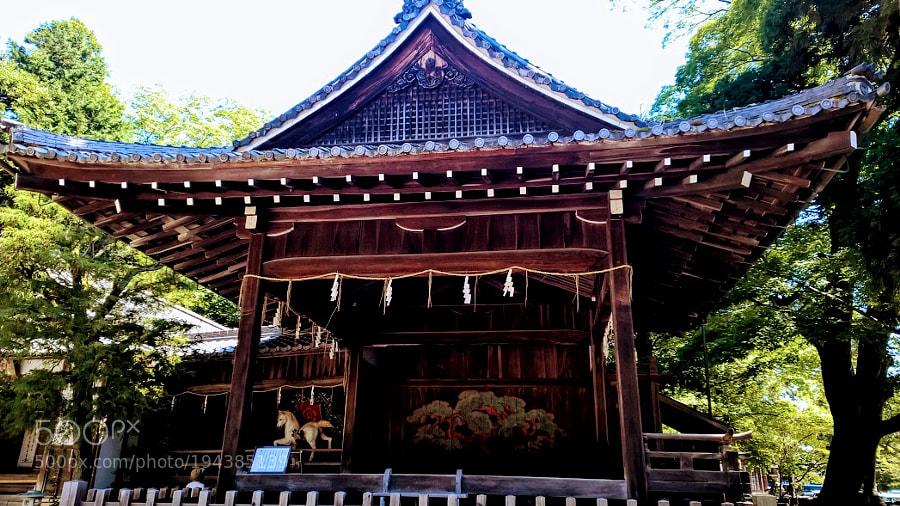 Hiyoshi Taisha