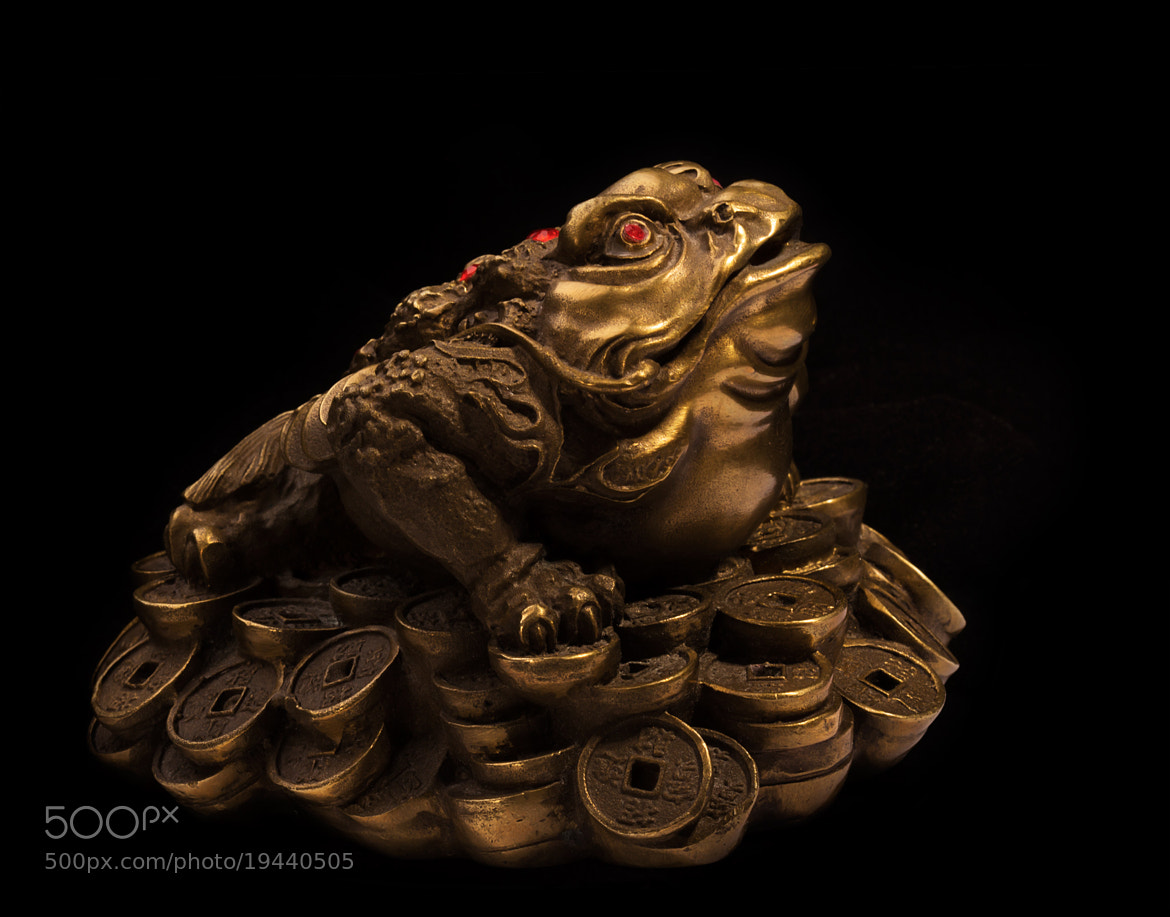 Photograph Feng Shui Money Frog by Vasily Menshov on 500px