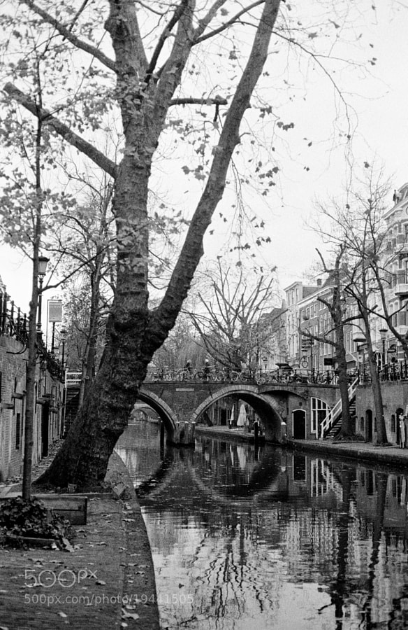 Utrecht, scanned 35mm B&W negative film by IFLORD.