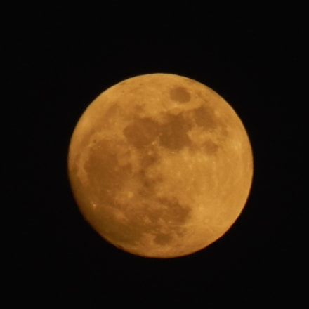 Another day, same moon, Nikon COOLPIX L820