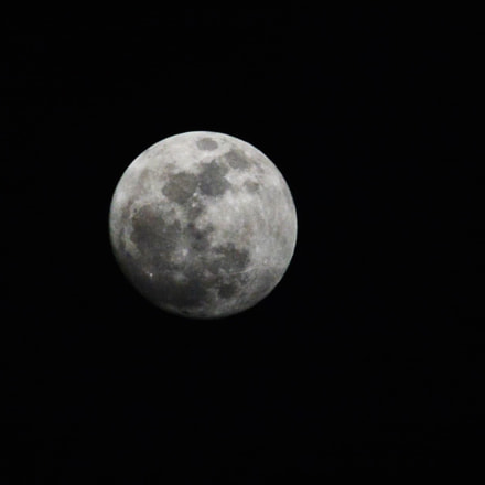 The Hunter's Moon !, Nikon D5200, AF-S DX Nikkor 55-200mm f/4-5.6G ED VR II