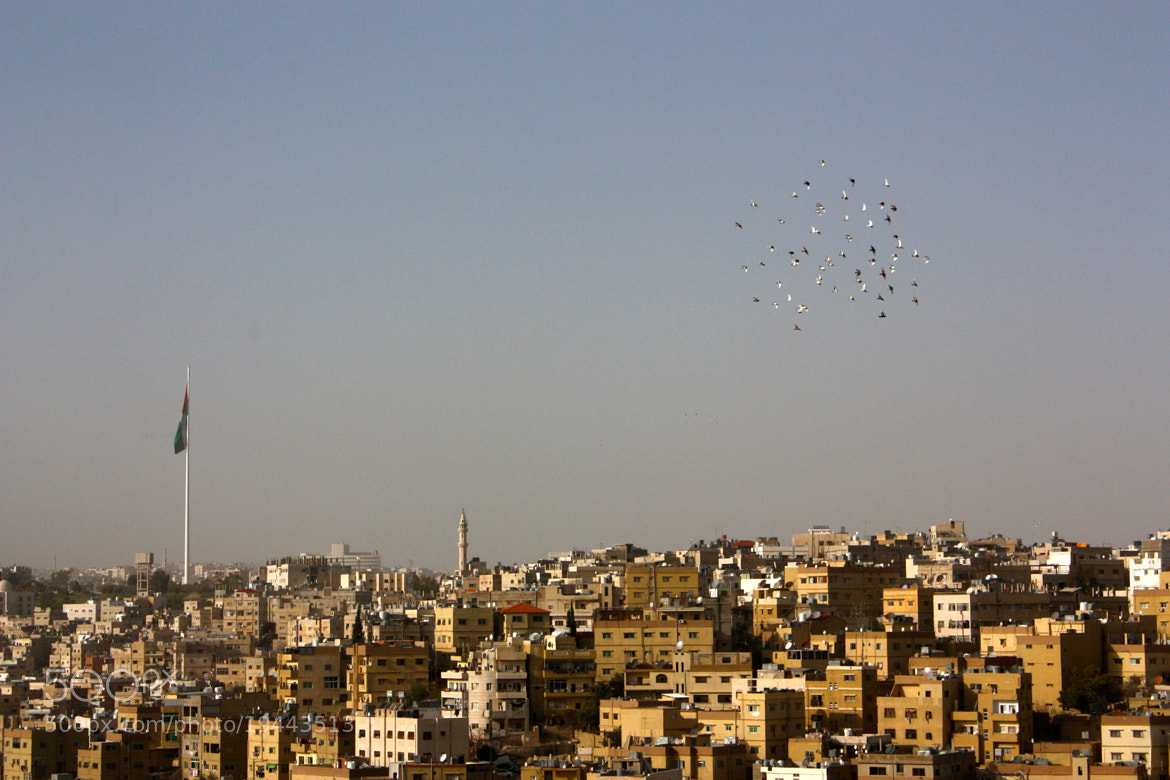 Photograph Above Amman by Annie Kadavy on 500px