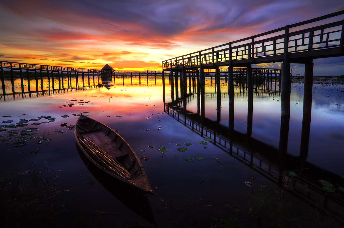 Photograph HDR Lotus Lake by Arthit Somsakul on 500px